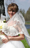 Young beautiful bride Royalty Free Stock Images