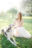 Young beautiful bride in wedding dress with greyhound outdoors royalty free stock photography