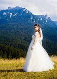 Young and beautiful bride in wedding dress Stock Images