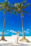 Young beautiful bride in white wedding dress under the palm tree Royalty Free Stock Image
