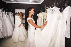 Young beautiful brides Royalty Free Stock Images