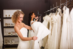 Young beautiful brides Stock Image