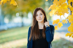 Young beautiful brunette autumn outdoors Royalty Free Stock Images