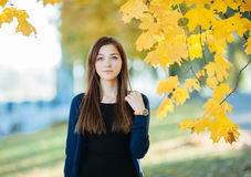 Young beautiful brunette woman autumn outdoors Stock Images
