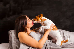 Young beautiful brunette woman plays in bed with her dog Stock Image