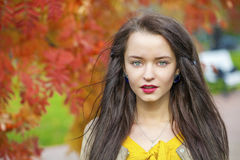 Young beautiful brunette woman posing outdoors in autumn park. Close up Portrait, Young beautiful brunette woman posing outdoors in autumn park Stock Images