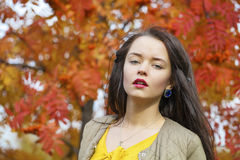 Young beautiful brunette woman posing outdoors in autumn park. Close up Portrait, Young beautiful brunette woman posing outdoors in autumn park Royalty Free Stock Photos