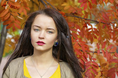 Young beautiful brunette woman posing outdoors in autumn park. Close up Portrait, Young beautiful brunette woman posing outdoors in autumn park Stock Image