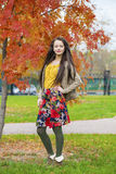 Young beautiful brunette woman posing outdoors in autumn park Stock Image