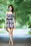 Young beautiful brunette woman in summer dress Royalty Free Stock Images