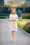 Young beautiful business woman Royalty Free Stock Photo