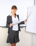 Young beautiful business woman working at office Stock Images