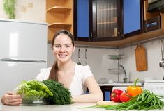 Young beautiful caucasian woman in the kitchen Stock Photos