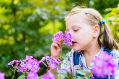 Young beautiful child girl smells purple flowers in the garden. Shallow depth of field Stock Photography
