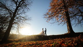 Young beautiful couple bride and groom gently stock video footage