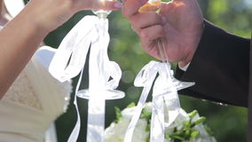 Young beautiful couple with champagne on their wedding day. Bride and groom with glasses in their hands stock video