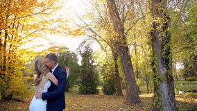 Young beautiful couple kissing in autumn park stock video footage