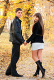 Young beautiful couple in love of autumn park Stock Photos