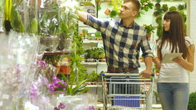 Young beautiful couple with supermarket trolley are walking and choosing indoor plant in the shopping mall. Man is. Taking houseplants and putting it into the stock video footage