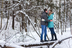 Young beautiful couple walking in winter forest Royalty Free Stock Photos