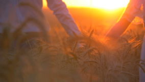 Young beautiful couple in a wheat field. Silhouette on sunset background. Slow motion