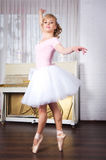 Young beautiful dancer posing in dance studio Royalty Free Stock Photos