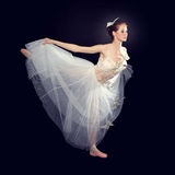 Young beautiful dancer posing on a studio Royalty Free Stock Image