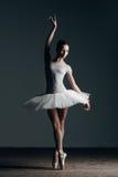 Young beautiful dancer posing in studio Royalty Free Stock Photo
