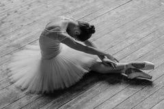 Young beautiful dancer posing in studio Stock Photography