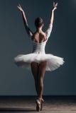 Young beautiful dancer posing in studio. Young beautiful dancer is posing in studio Stock Photos