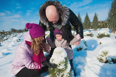 Young beautiful family in bright clothes choosing a Christmas tree, snow, lifestyle, winter holidays Stock Photos