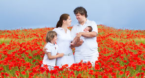 Young beautiful family in a red flower field Royalty Free Stock Photos