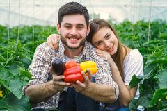 Young and beautiful, farmers holding vegetables. Young and beautiful, farmers are holding fruit and looking straight into the camera  smiling Stock Photo