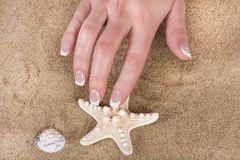 Girl hand with french nails polish style touching starfish on sandy beach. Young beautiful female hand with french nails polish style touching starfish on sandy royalty free stock photo