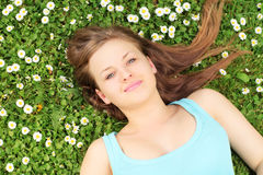 Young beautiful female lying on a grass with daisy flowers Stock Photos