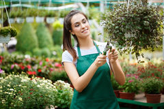 Young beautiful florist taking care of flowers over blury outdoor background. Stock Photography