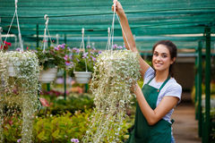 Young beautiful florist taking care of flowers over blury outdoor background. Stock Photo