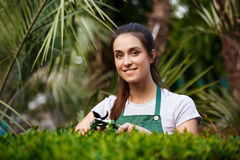 Young beautiful florist taking care of flowers over blury outdoor background. Stock Photos