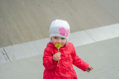 Young beautiful girl baby in a red jacket and white hat playing on the playground in the skate park, inhaling the aroma of yellow Stock Image