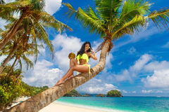 Young beautiful girl in bikini with coconut on the palm tree on Stock Image