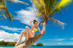 Young beautiful girl in bikini on the palm tree on a tropical be Royalty Free Stock Photography