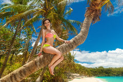 Young beautiful girl in bikini on the palm tree on a tropical beach Stock Photos