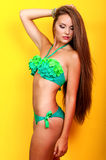 Young beautiful girl in a bikini in the studio Royalty Free Stock Images