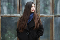 Young beautiful girl in a black coat and blue scarf for a posing in the autumn / spring park. An elegant brunette girl with gorgeo Royalty Free Stock Image
