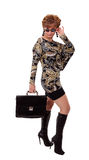 Young beautiful girl, a businesswoman with a briefcase Stock Photography