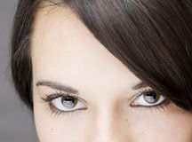 Young beautiful girl close up. Detail of the nice eyes of a gorgeous brunette young girl Royalty Free Stock Photography