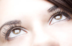 Young beautiful girl close up. Detail of the nice eyes of a gorgeous brunette young girl Stock Photos
