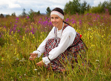 Young beautiful girl collects wild flowers Stock Photo