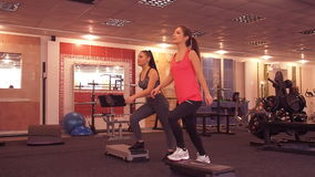 Young beautiful girl engaged in fitness in the gym. stock video footage