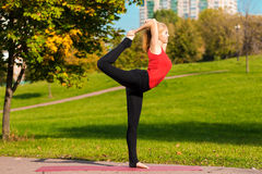 Young beautiful girl is engaged in yoga, outdoors in a park Royalty Free Stock Image